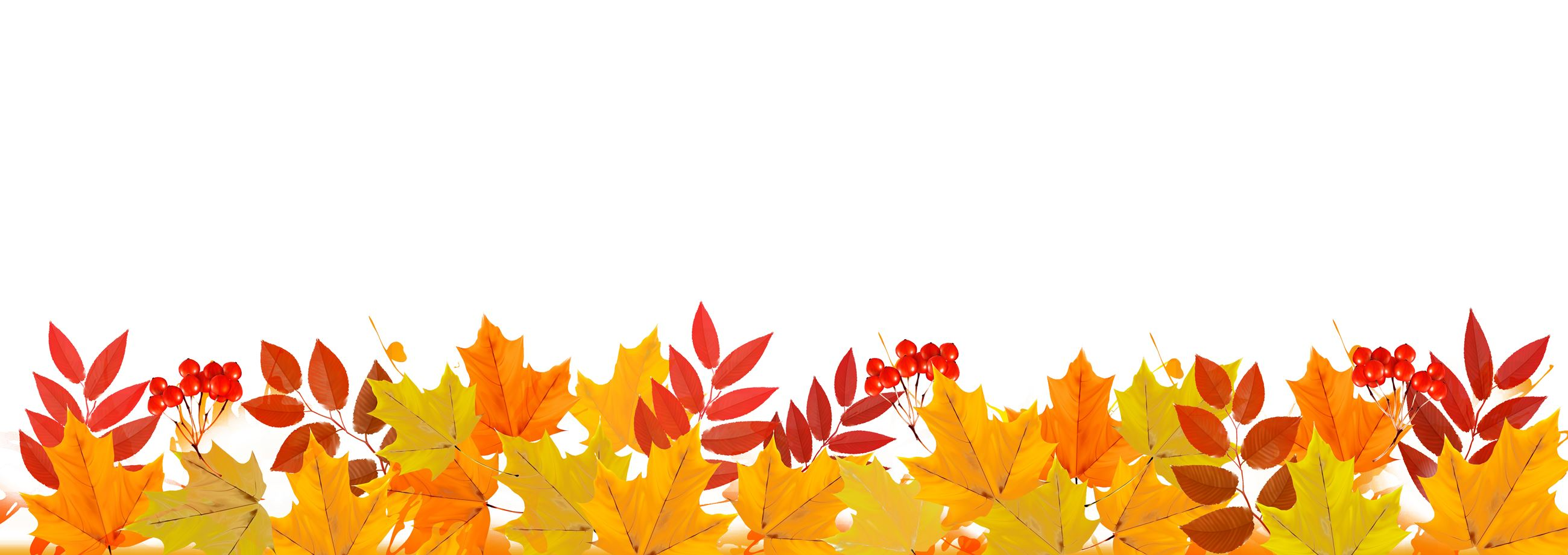 Leaves Banner Background2