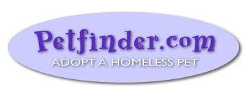 Petfinder.com adopt a homeless pet